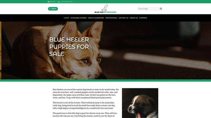 Blueheelerbreeder.com - Australian Shepherd Puppy Scam Review