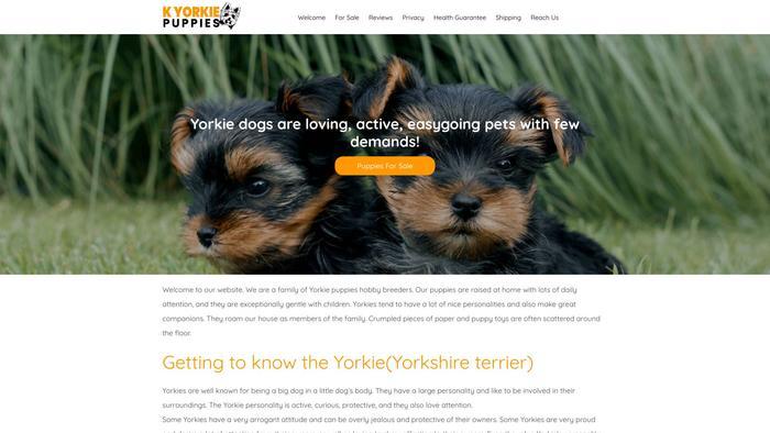Kyorkiepuppies.com - Yorkshire Terrier Puppy Scam Review