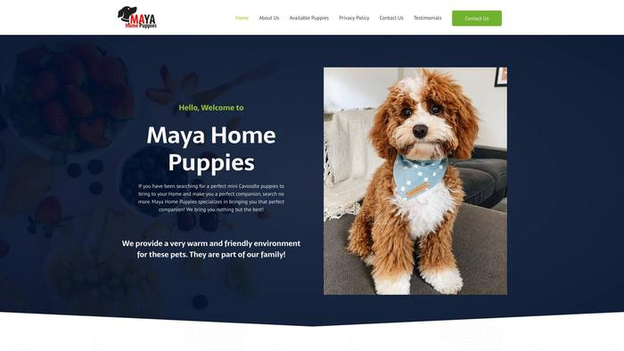 Mayahomepups.com - Cavapoo Puppy Scam Review