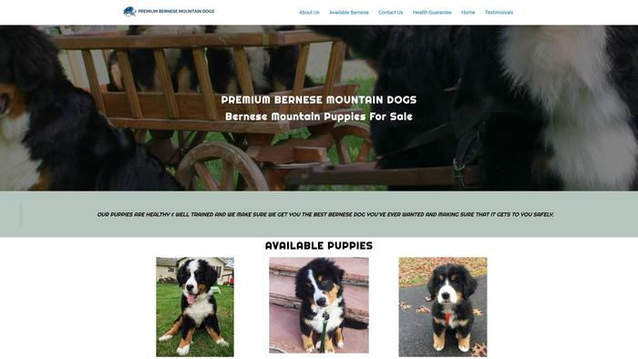 Premiumbernesemountaindogs.com - Bernese Mountain Dog Puppy Scam Review