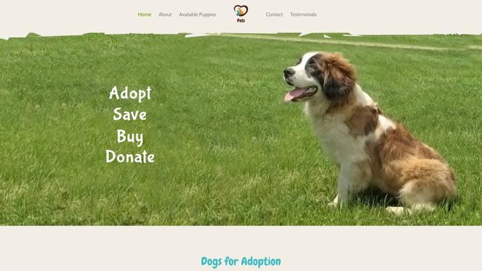 Stbernardspuppies.com - Saint Bernard Puppy Scam Review