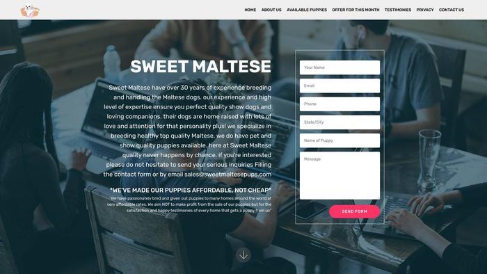 Sweetmaltesepups.com - Maltese Puppy Scam Review