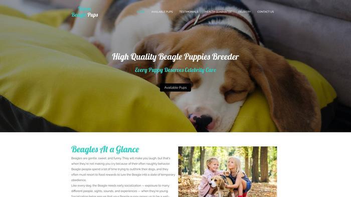 Veronbeaglepups.com - Beagle Puppy Scam Review