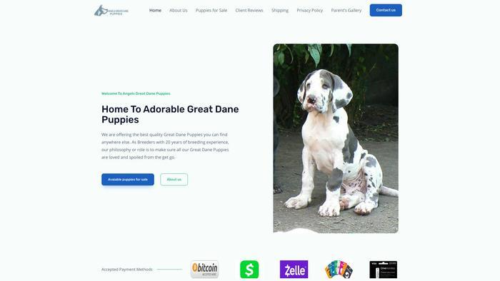 Angelsgreatdanepuppies.com - Great Dane Puppy Scam Review