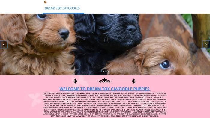 Cavapoohomeoflove.com - Cavapoo Puppy Scam Review