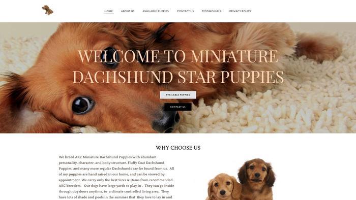 Dachshundstarslife.net - Dachshund Puppy Scam Review