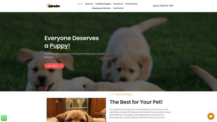 Labradorretrieverbreed.dog - Golden Retriever Puppy Scam Review