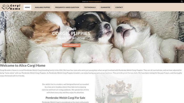 Alicecorgipupies.xyz - Corgi Puppy Scam Review