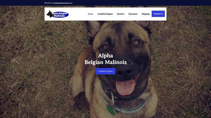 Alphabelgianmalinois.com - Germanshepherd Puppy Scam Review