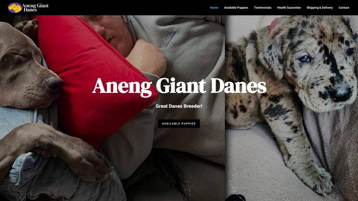 Anenggiantdanes.com - Great Dane Puppy Scam Review