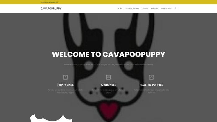 Cavapoopuppy.site - Cavapoo Puppy Scam Review