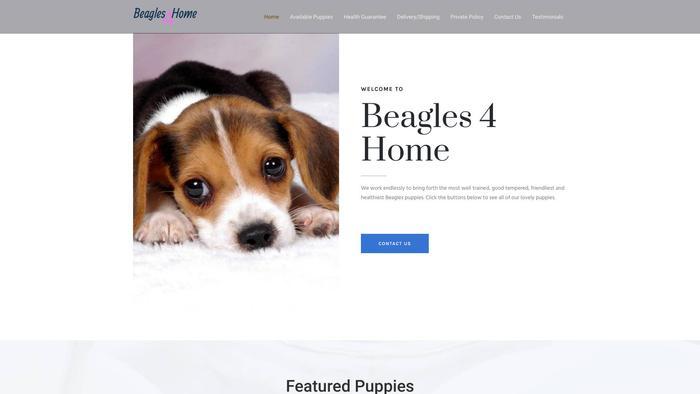 Beagles4home.com - Beagle Puppy Scam Review