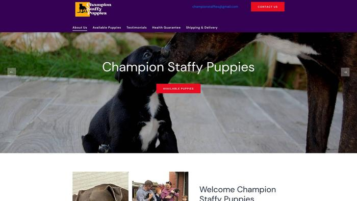 Championstaffypups.com - Pit Bull Puppy Scam Review