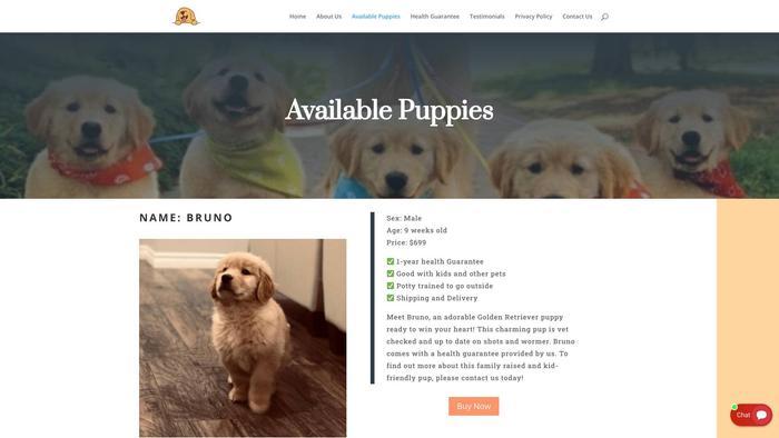 Kinggoldenretriever.com - Golden Retriever Puppy Scam Review