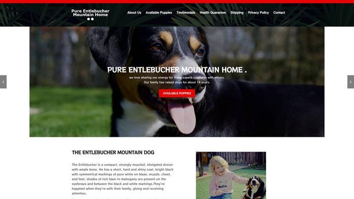 Pureentlebuchermountainhome.com - Bernese Mountain Dog Puppy Scam Review