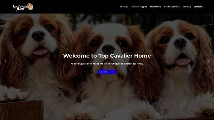 Topcavalierhome.com - Cavalier King Charles Spaniel Puppy Scam Review