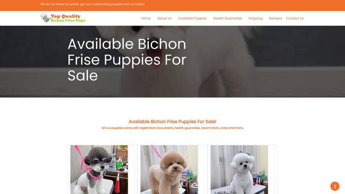 Topqualitybichonfrisepups.com - Bichon Frise Puppy Scam Review