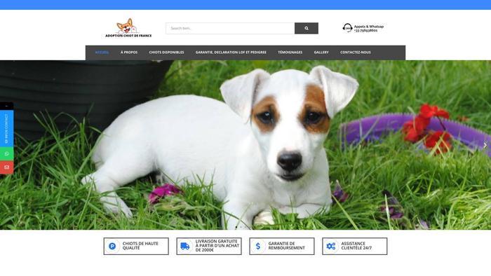 Adoptionchiotdefrance.com - Maltese Puppy Scam Review