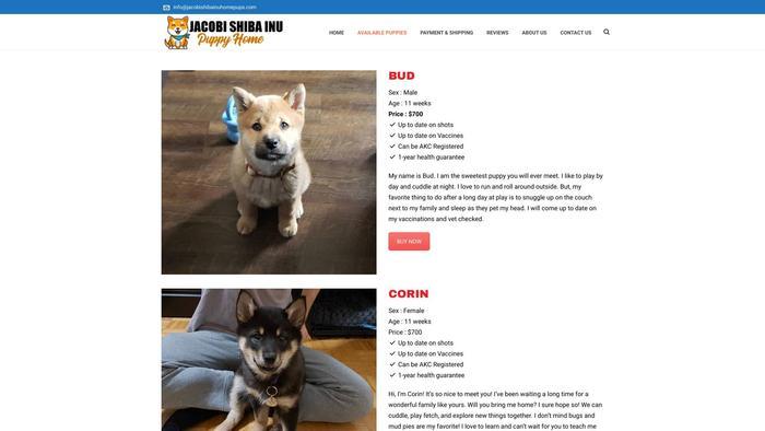 Jacobishibainuhomepups.com - Shibhainu Puppy Scam Review