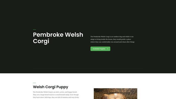 Welshcorgifamily.com - Corgi Puppy Scam Review