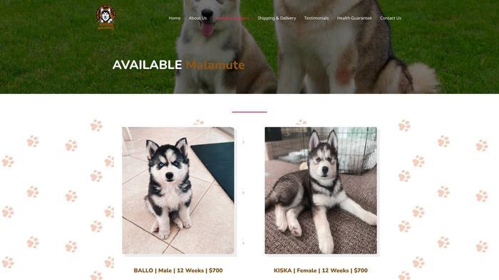 Affordablealaskanmalamute.com - Malamute Puppy Scam Review