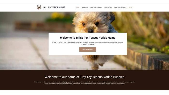 Billasyorkiepuppies.com - Yorkshire Terrier Puppy Scam Review