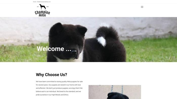 Championakitas.com - Akita Puppy Scam Review