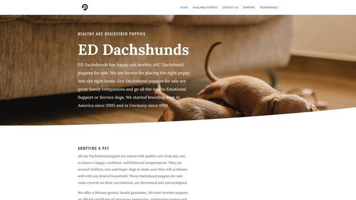 Eddachshundpups.com - Dachshund Puppy Scam Review