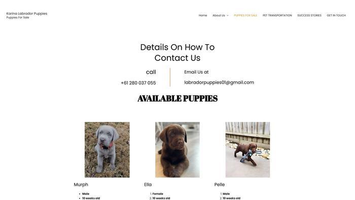 Karinalabradorpuppies.com - Labrador Puppy Scam Review