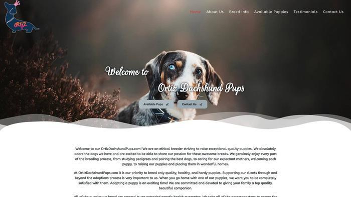 Ortizdachshundpups.com - Dachshund Puppy Scam Review