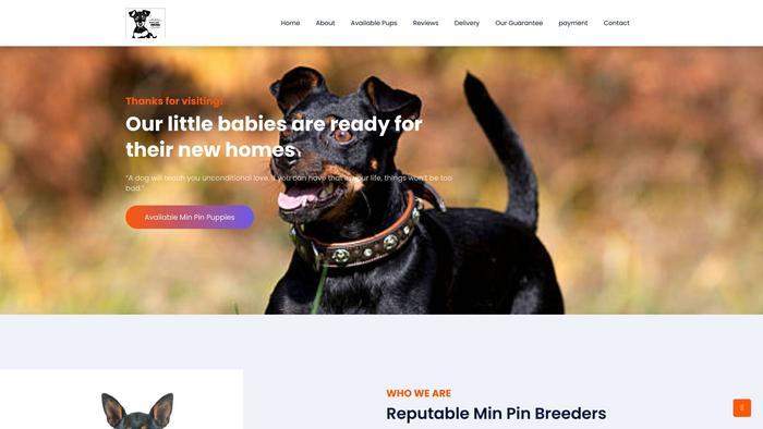Soulmateminpin.com - Doberman Pinscher Puppy Scam Review