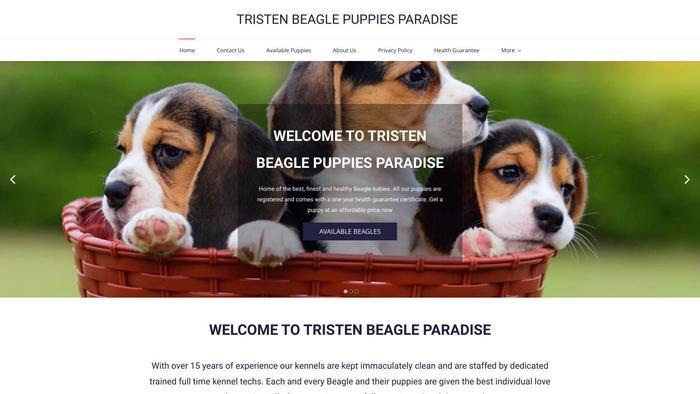Tristenbeaglepuppies.com - Beagle Puppy Scam Review