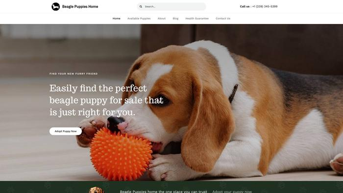 Beaglepuppiesrehome.com - Beagle Puppy Scam Review