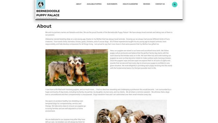 Bernedoodlepuppypalace.com - Bernedoodle Puppy Scam Review