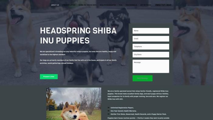 Headspringshibainupuppies.com - Shibhainu Puppy Scam Review