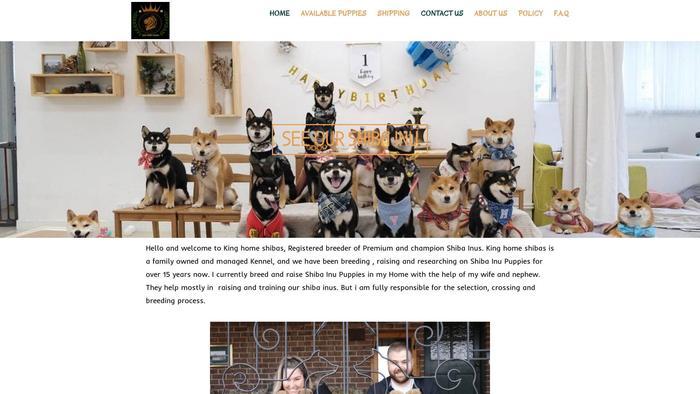 Kinghomeshibas.com - Shibhainu Puppy Scam Review