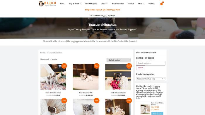 Clarischihuahuapuppies.com - Chihuahua Puppy Scam Review