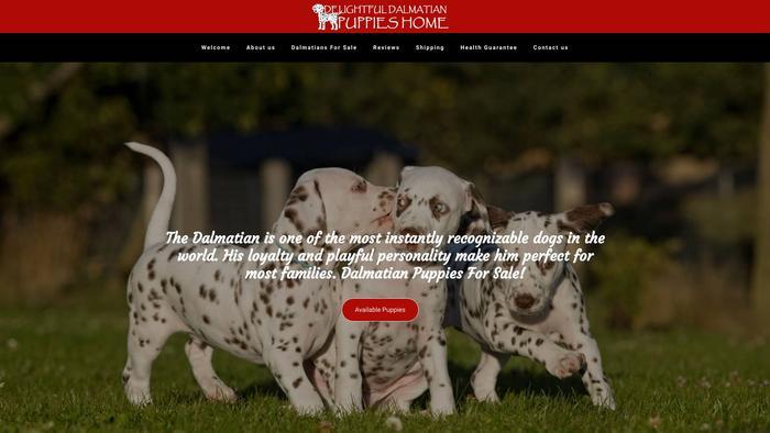 Delightfuldalmatianpuppieshome.com - Labrador Puppy Scam Review