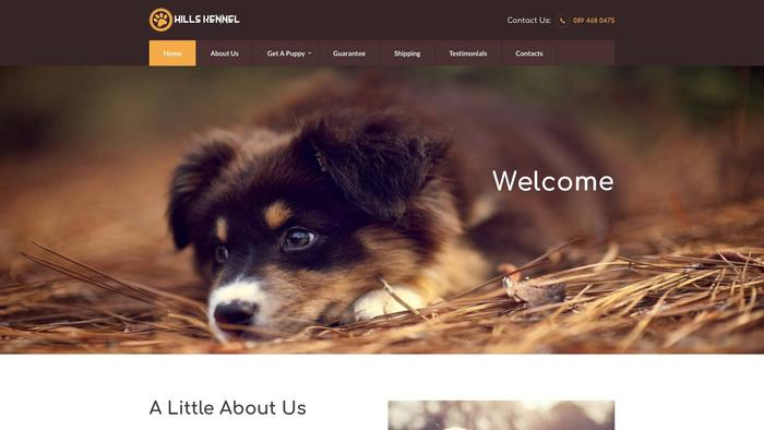 Hillskennel.com - Beagle Puppy Scam Review