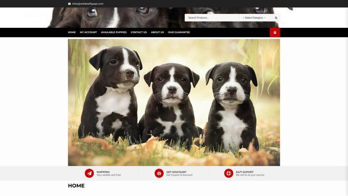 Solidstaffypups.com - Terrier Puppy Scam Review