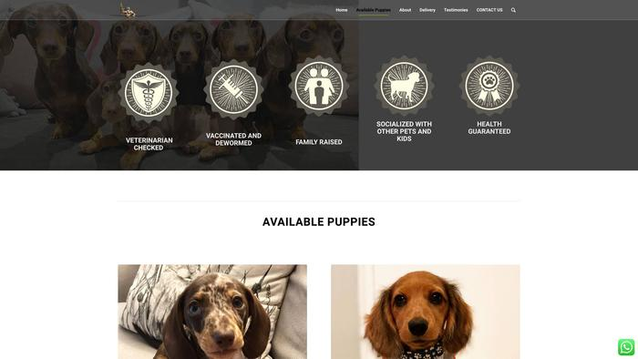 Zeusdominiondachshunds.online - Dachshund Puppy Scam Review