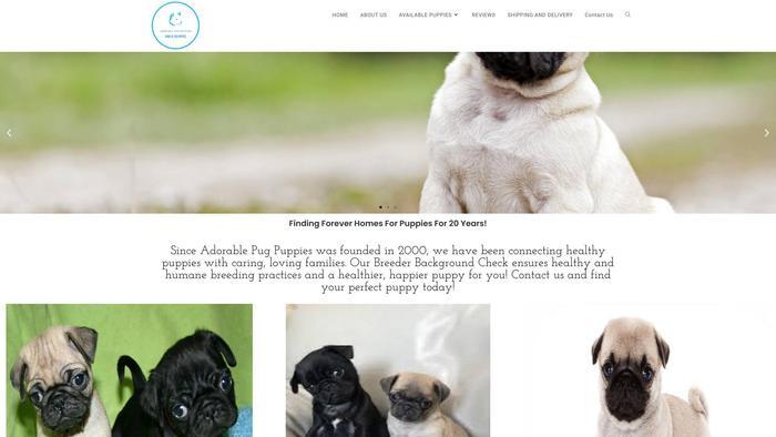 Adorablepugpuppies.com - Pug Puppy Scam Review