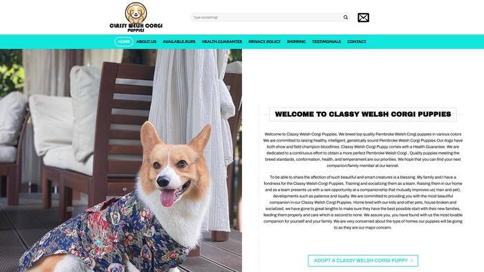Classywelshcorgipuppies.com - Corgi Puppy Scam Review