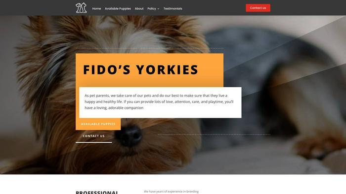 Fidosyorkies.com - Yorkshire Terrier Puppy Scam Review
