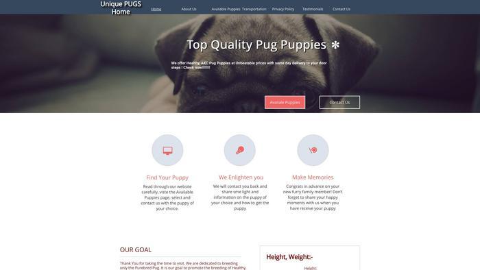 Uniquepugshome.com - Pug Puppy Scam Review