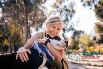 Affectionate mature woman embracing pet dog in nature how long does a female dog stay in heat