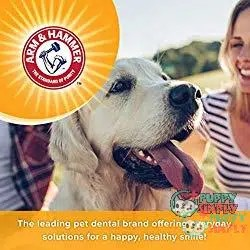 Arm & Hammer Dog Dental Care Toothpaste 1