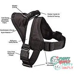 EXPAWLORER Big Dog Soft Reflective No Pull Harness 1