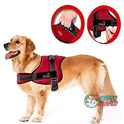 Lifepul(TM) No Pull Dog Vest Harness