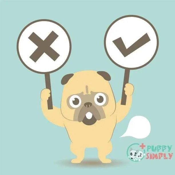 Dog standing on his own two feet and holding Right and Wrong Sign (true-false question; yes-no question) vector art illustration Which foods should you not feed your boxer?